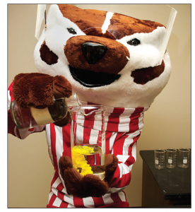 Bucky Badger's Experiment - What ingredients did he use?